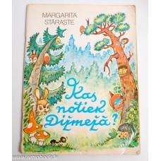 Bērnu grāmata Margarita Staraste, Kas notiek Dižmežā?