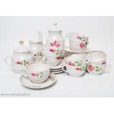 Porcelāna kafijas servīze Māra 9 personām, apgleznojums RPR